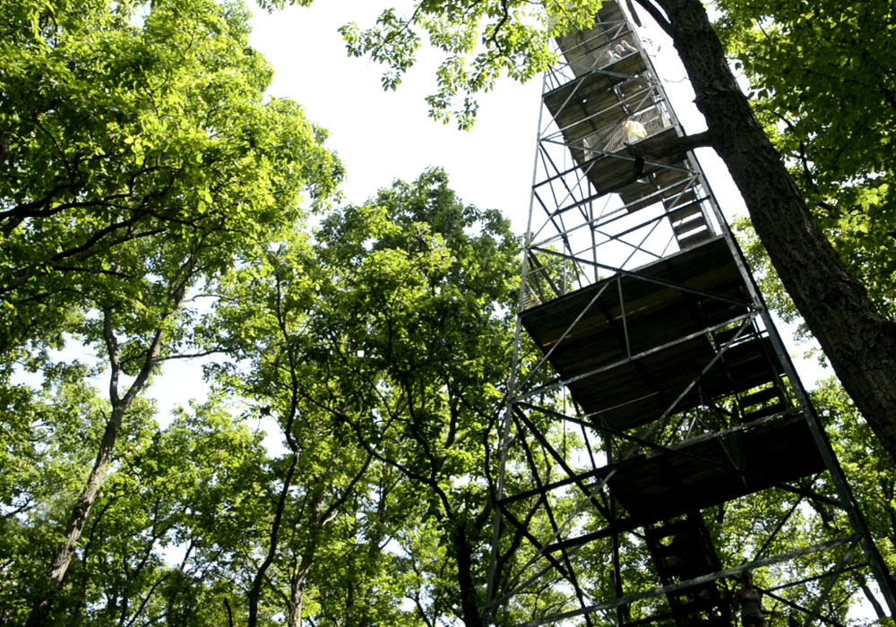 Looking Straight Up The Fire Tower