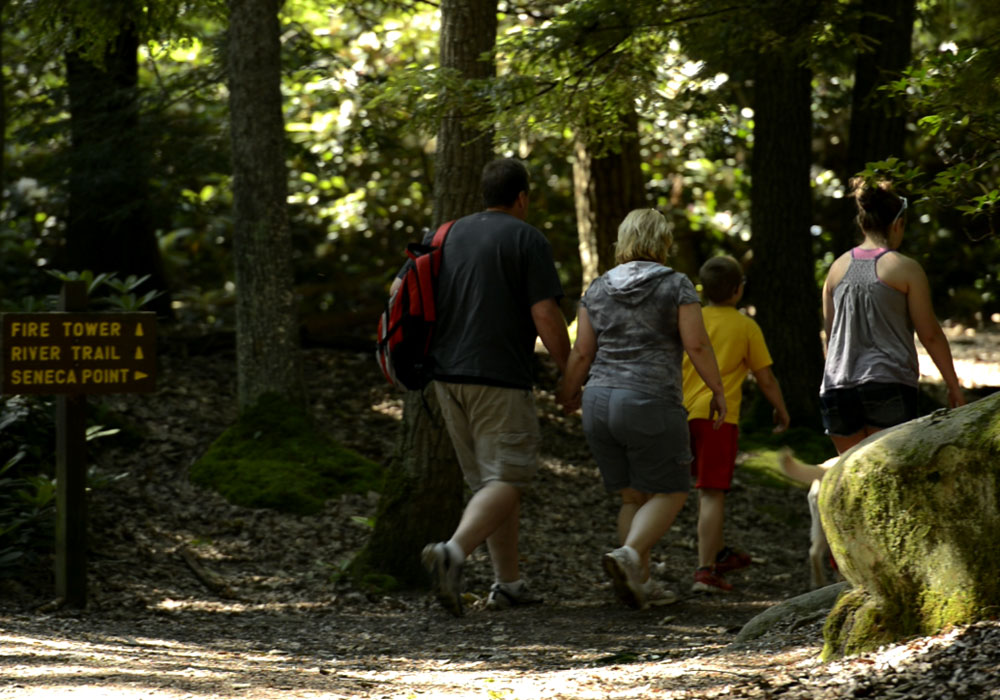 Family Setting Off On Hiking Trail